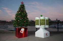 A Londra le luci dell'albero di Natale le alimentano i cavoletti di Bruxelles