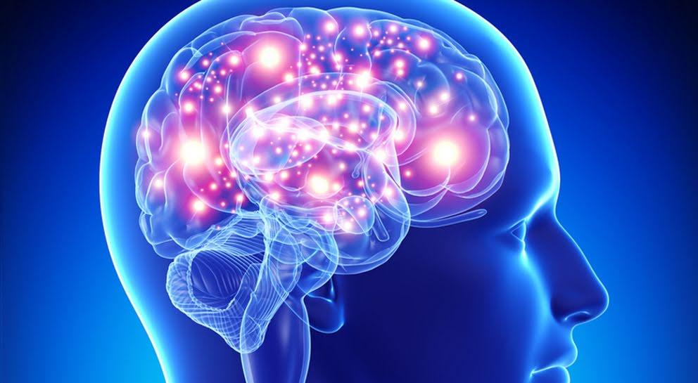 Il cervello è ancora attivo dopo la morte, anche se per poco