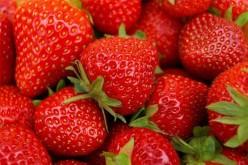 La fragola combatte le allergie, in particolare eczemi e dermatiti