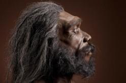Scoperto in Spagna il DNA umano più antico mai sequenziato