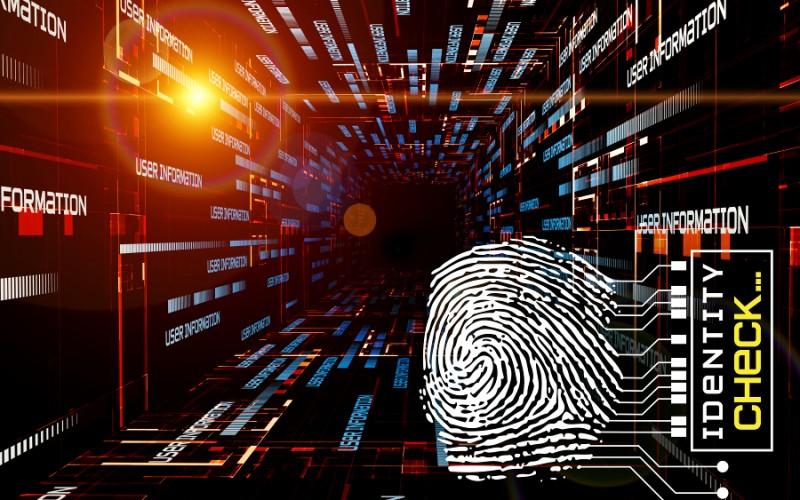 Crimini online, arriva il software che setaccia la Rete