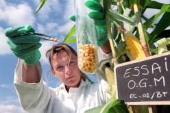 #ItaliaNOogm: Legambiente scende in piazza contro gli OGM
