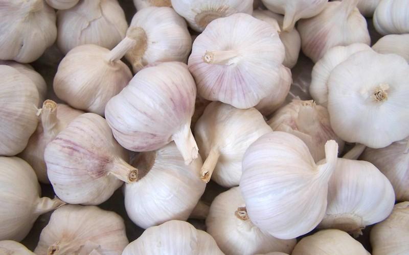 Studio scopre in aglio e fluoro una nuova accoppiata anti-cancro