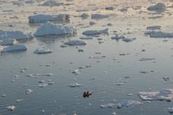 Allarme clima: fra 100 anni la temperatura salirà di 5 gradi