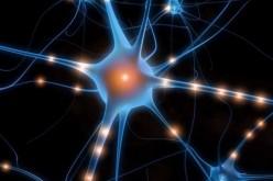Sindrome di Down, al via i test per combattere i sintomi con il Prozac