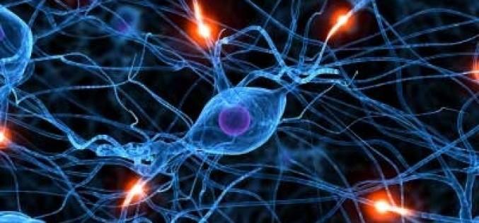 Sclerosi multipla, un mix di molecole per la diagnosi della forma più aggressiva
