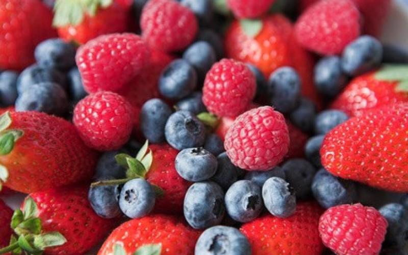 Epatite A: chiesta rogatoria a Canada, Polonia e Ucraina per i frutti di bosco