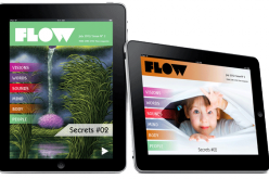 Flow: rivista per iPad a contenuti orientabili
