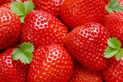 Il colesterolo si abbassa con le fragole