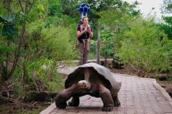 Google Street View visita le Galapagos