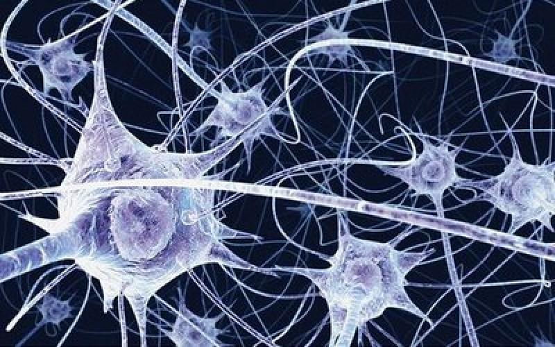 Parkinson: in Italia la macchina per curare il tremore