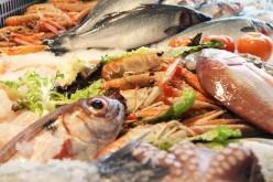 Il pesce in gravidanza è salutare, l'allarme mercurio è infondato