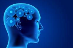 Innopharma: più efficienza nella realizzazione degli studi clinici