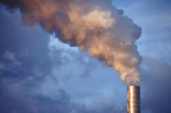 Lo smog danneggia il cervello, sopratutto dei neonati