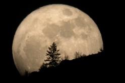 La luna piena è nemica del sonno