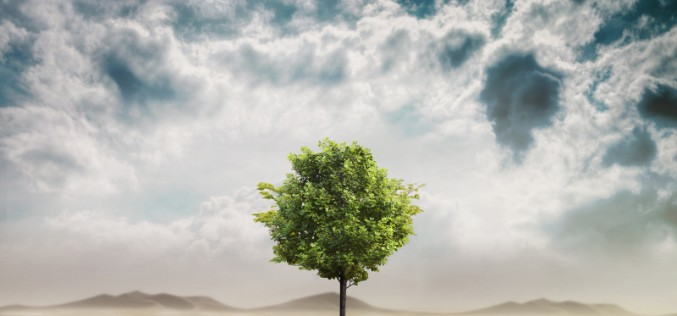 L'ICT per lo sviluppo sostenibile: Ericsson rilascia la nuova edizione del Sustainability e Corporate Responsibility Report