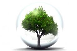 L'innovazione sostenibile di Credemtel: quando la tecnologia puo' aiutare l'ambiente