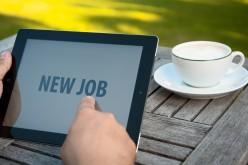 Mercato del Lavoro e crescita uso web in Italia: su Internet il 17% di offerte di lavoro in più rispetto al 2012