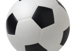 Mondiali 2010: tutti i numeri e le curiosità analizzati con QlikView