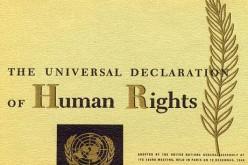 Onu, l'accesso a Internet è un diritto universale