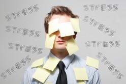 Perdere i dati aziendali è più stressante di perdere il lavoro?