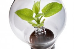 Sacchetti ecofriendly e riduzione del consumo di energia: l'Italia è sempre più green