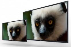 Sony sviluppa un monitor OLED 4K professionale