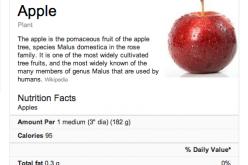 Tutti a dieta con Google
