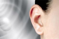 L'udito umano filtra i suoni che ci infastidiscono