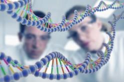 """USA: la Corte Suprema stoppa le aziende """"il DNA non si brevetta"""""""