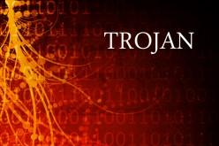 White Paper: tutto ciò che c'è da sapere sul trojan Citadel