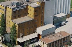 Case history – Molino Grassi: qualità, innovazione e collaborazione, gli ingredienti di una ricetta vincente