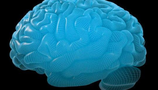 Cervello, le capacità intellettive cambiano con le stagioni