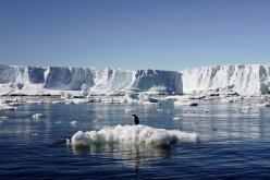 Senza gli argini dell'Antartide Est il mondo sarà sommerso dalle acque