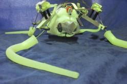 Octopus e PoseiDRONE: polpi robot Made in Italy