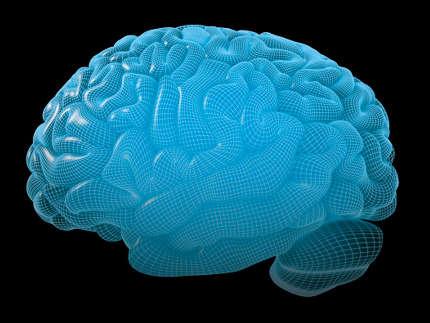 Cervello umano, riprodotta la prima miniatura in laboratorio