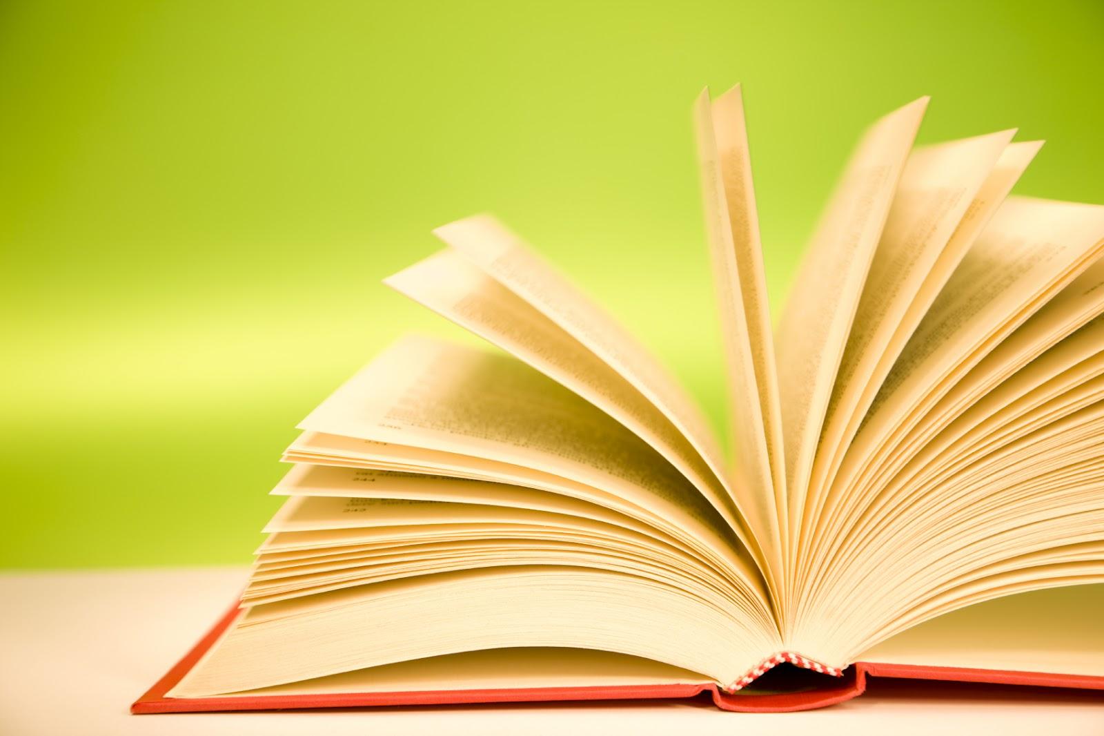Pirateria del mondo del libro: danno per il sistema Paese di 1,3 miliardi