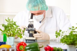 IBM aiuta a migliorare la sicurezza alimentare