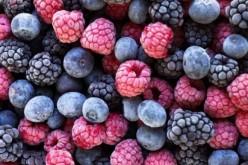 Allarme epatite A, 1.500 casi per i frutti di bosco surgelati