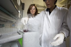 Farmaci a bordo dei nanoshuttle col progetto NABBA dell'Università di Milano-Bicocca