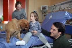 Crowdfunding: Fidalo e Ospedale Buzzi insieme per la Pet Therapy