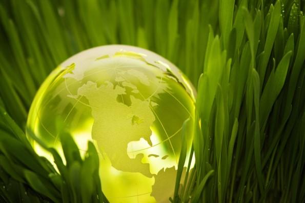 L'IT sostenibile può generare benefici significativi, ma non è una priorità per la maggior parte delle organizzazioni
