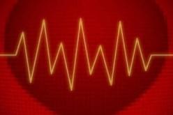 Cuore, scoperta proteina che lo ripara dopo l'infarto