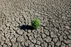 ONU e clima: mai così tanti gas serra in 800mila anni