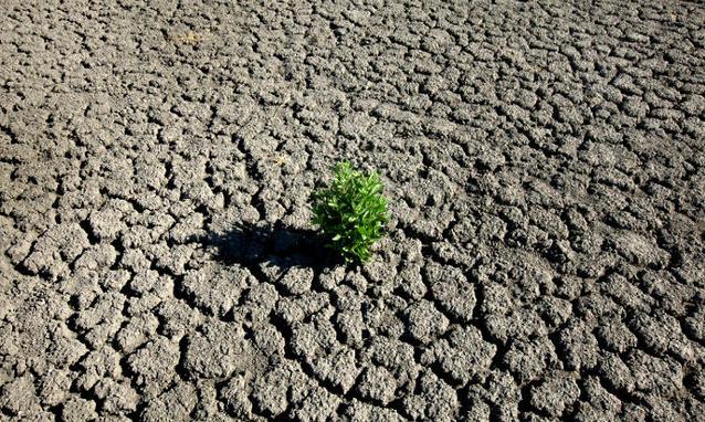 ONU lancia allarme clima
