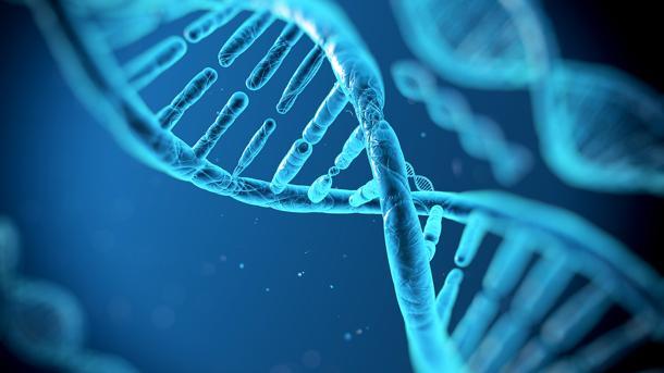 Talassemia, si può eliminare con la chirurgia genetica