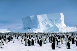 Russia e Cina non vogliono un Antartide protetto