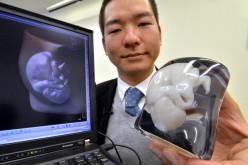 Fasotec stampa organi in 3D per il training dei medici