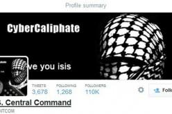USA e ISIS nel terrorismo della rete