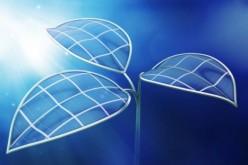 Energia solare, la foglia bionica che produce carburante ecologico